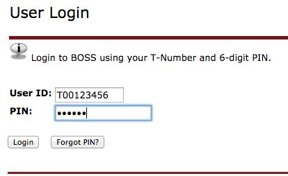 Boss login screen