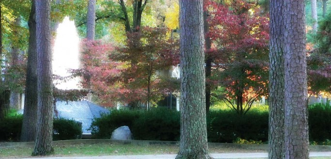 Fall scene of UALR Cooper Fountain behind foliage and trees