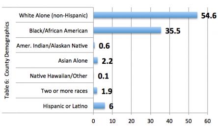 Table 6: Pulaski County Demographics