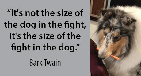 It's not the size of the dog in the fight, it's the size of the fight in the dog. - Bark Twain