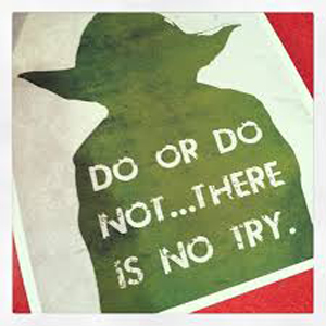 """""""Do or do not... There is no try."""""""