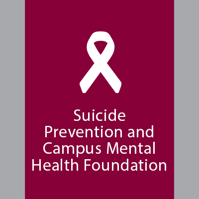 Mental Health Counseling laws foundation college