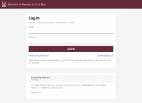 The new log-in form allows you to enter your university email address as well as the original NetID username.