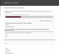 Image of new Workday security role request form