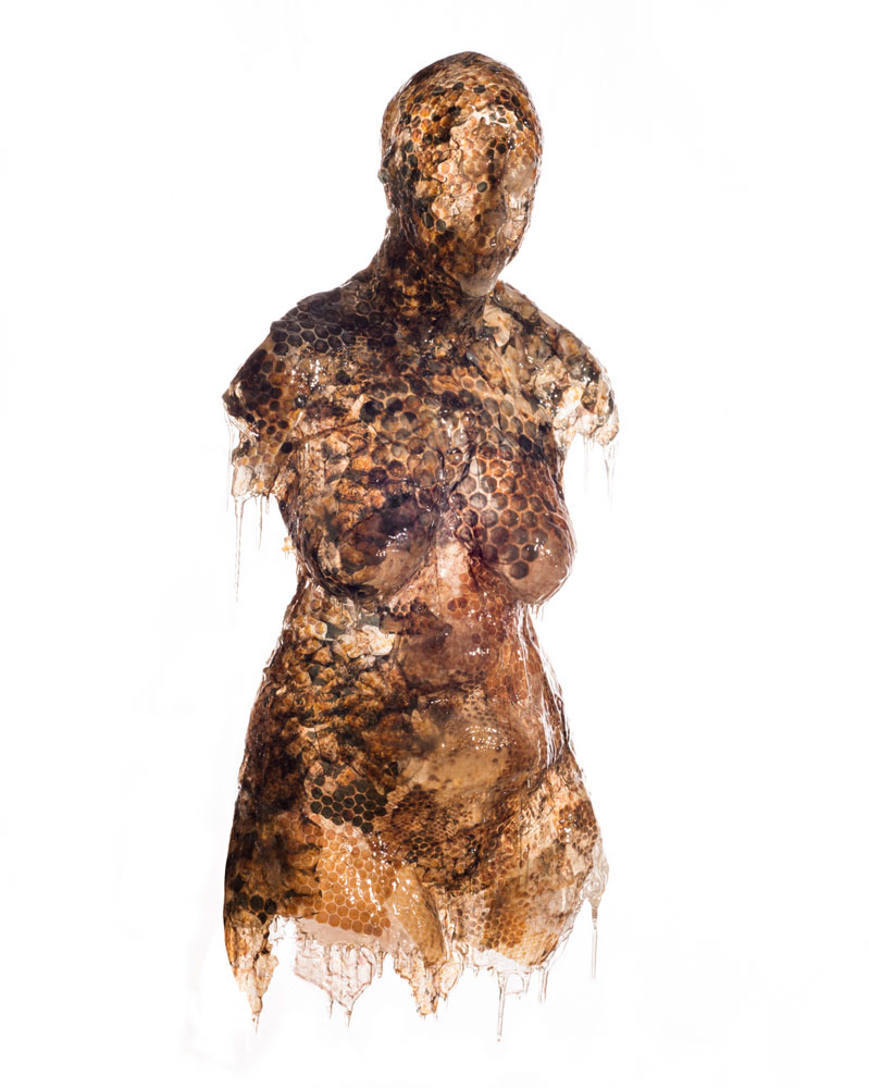 """Joli Livaudais' work, """"The Mother, Exhumed,"""" will be on display at the """"Nasty Woman"""" exhibit at UA Little Rock."""