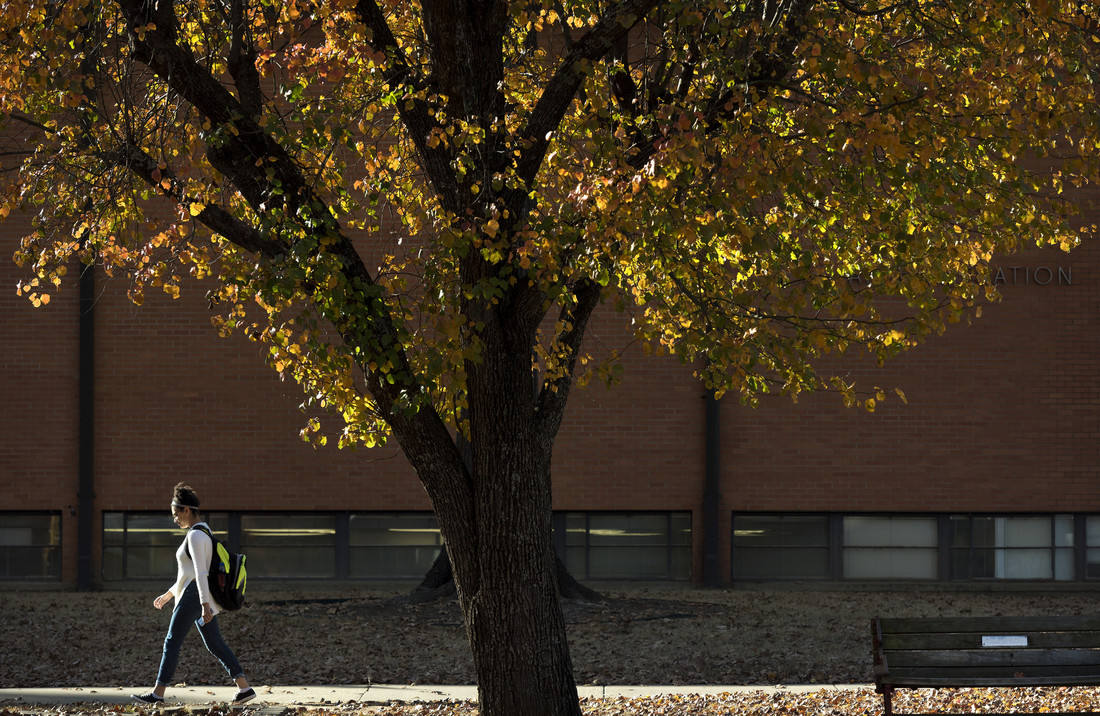A warm fall day as a student walks past the Administration building on November 28, 2017.