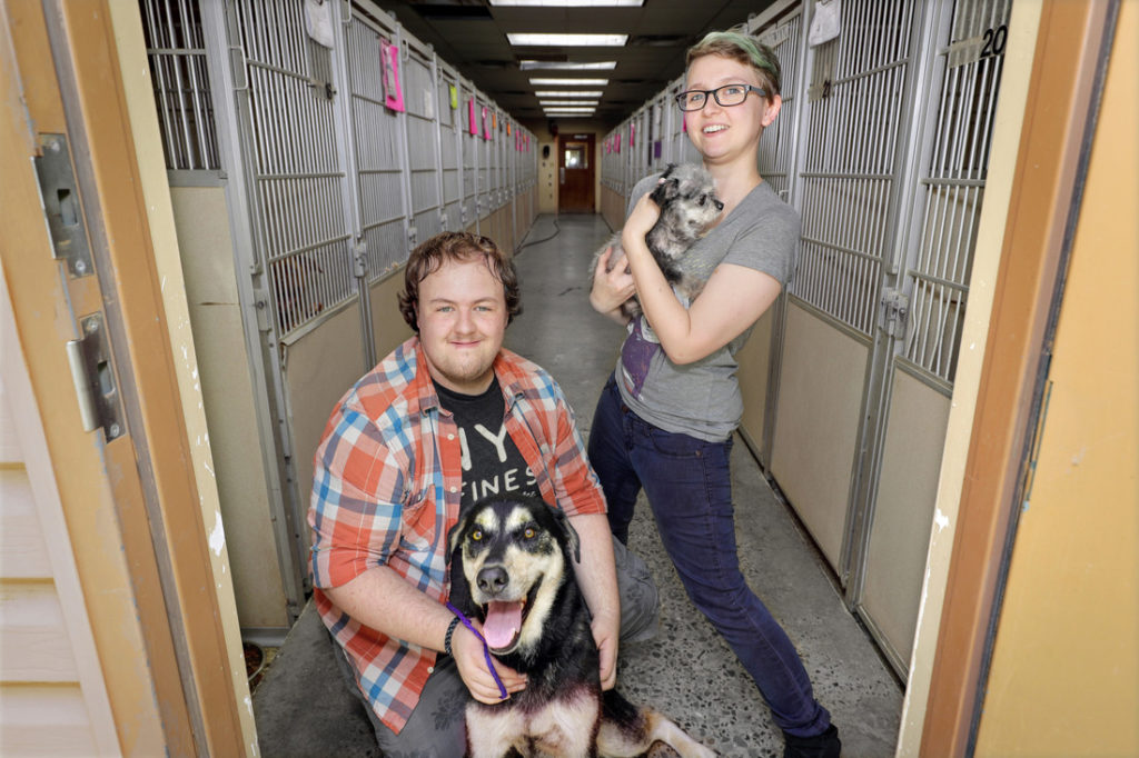 "UA Little Rock graduate students Olivia Dunlap and Tanner Marshall are developing a dog rescue video game, ""To The Rescue."" Photo by Ben Krain."