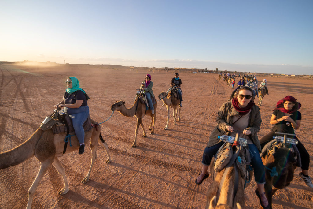 UA Little Rock students ride camels while camping in the Moroccan desert. Photo by Larry Rhodes.