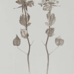 """Marjorie William-Smith's """"Back and Forth"""" is on display in her new exhibit."""