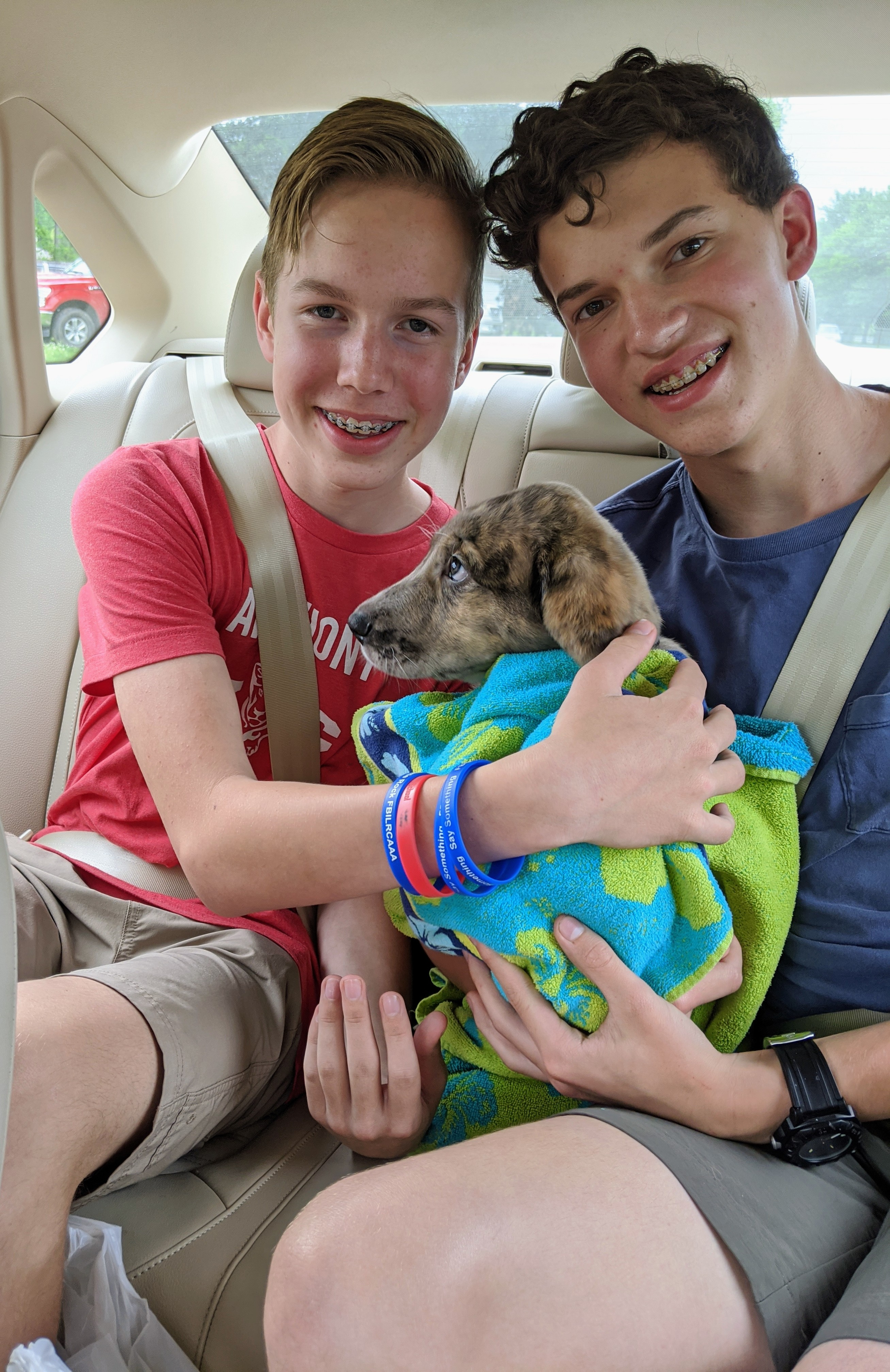 Laura McClellan's sons, Julian and Will, with their new puppy, Bruce.