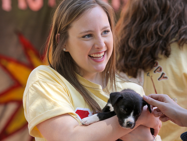 Members of the Chi-Omega sorority participate in their Rent-A-Puppy philanthropy event to raise money for Make-A-Wish.
