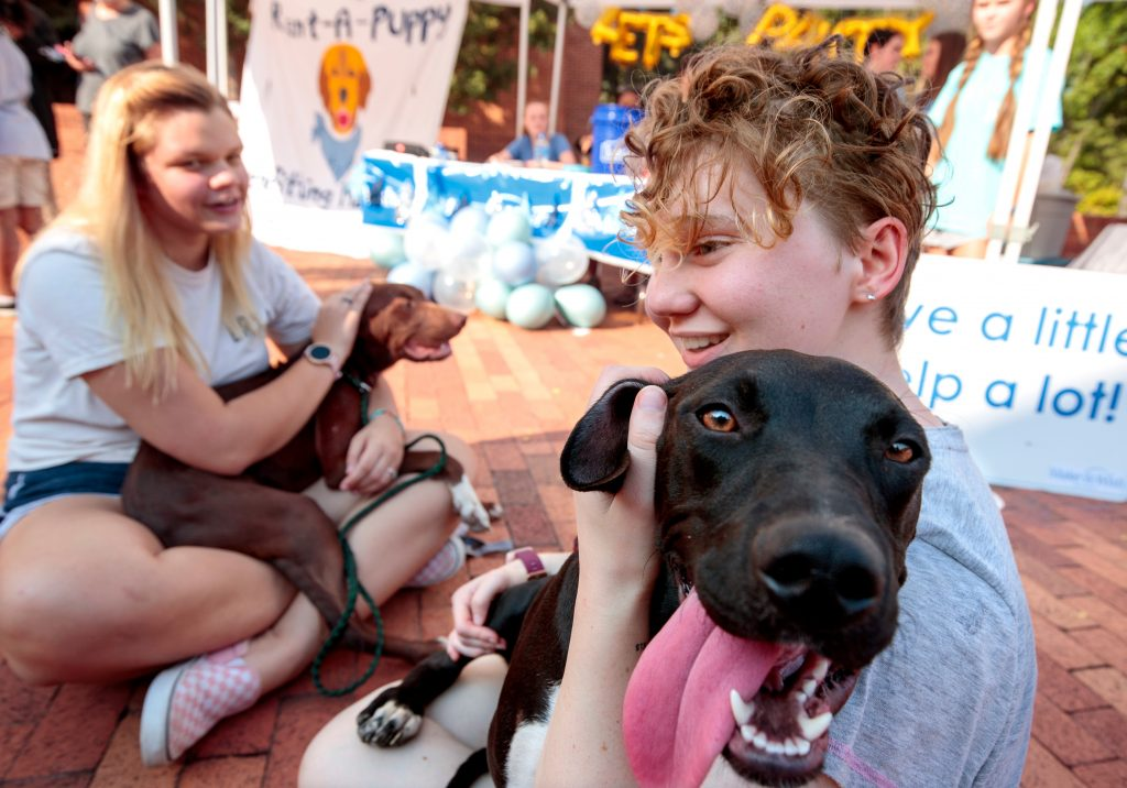 Students donate $1 dollar a minute to pet and play with dogs available for adoption during the Chi-Omega Rent-A-Puppy philanthropy event, which raises money for the Make-A-Wish Foundation. Photo by Benjamin Krain 09/30/21