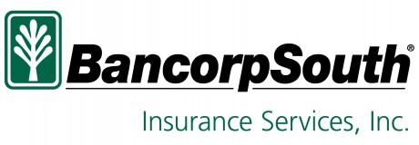 BXS Insurance Services_Black_PMS 342_Hor