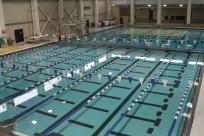 Optimized-pool lanes