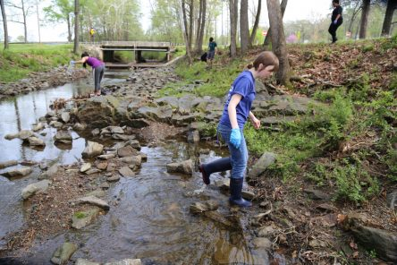 Coleman Creek Cleanup