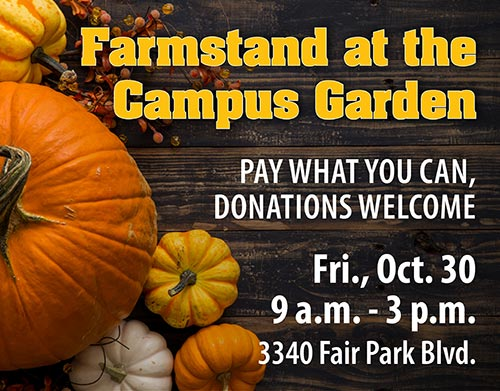 Farmstand at the Campus Garden. Pay what you can, donations welcome. Fri., Oct. 30. 9 a.m. - 3 p.m. 3340 Fair Park Blvd.